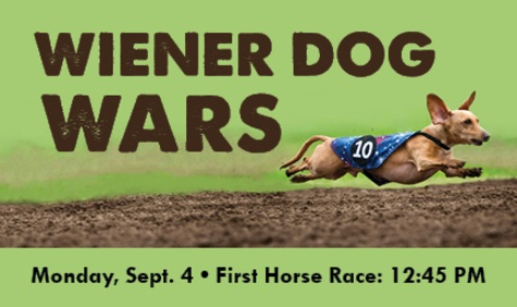 Wiener Dog Wars