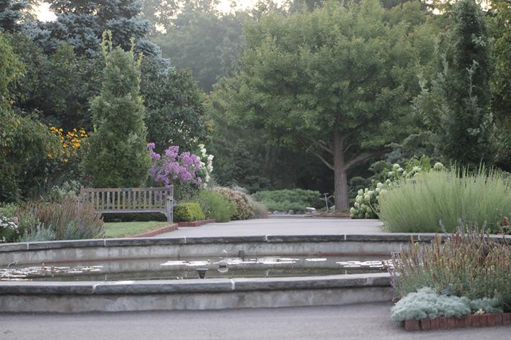 One-hour Guided Walking Tours of the Arboretum