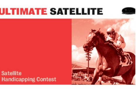 Ultimate NHC Qualifier Satellite