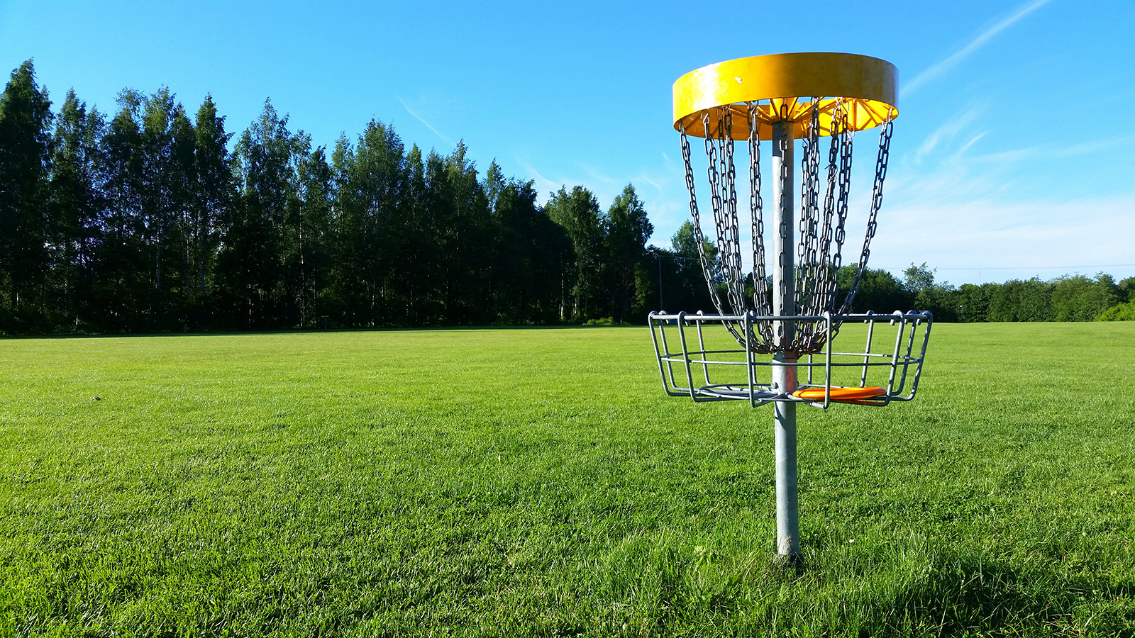 Shakopee Lions Annual Disc Golf Tournament